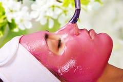 Meisje met bevochtigend fruit gezichtsmasker Stock Foto