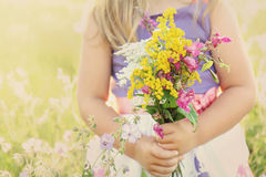 Meisje met bloemen op grasrijke weide Royalty-vrije Stock Fotografie