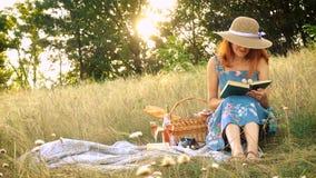 Meisje met boek op een picknick stock videobeelden