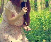 Meisje met dandelionson groen gebied Stock Afbeeldingen