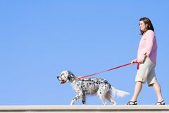 Meisje met de hond Stock Afbeelding