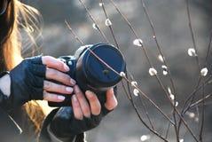 Meisje met een camera dichtbij wilgenverbindingen royalty-vrije stock foto