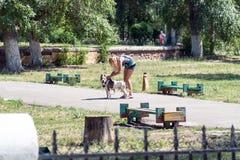 Meisje met een hond in het park royalty-vrije stock afbeeldingen