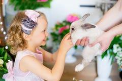 Meisje met een konijn Stock Foto