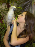 Meisje met een papegaai Stock Afbeeldingen