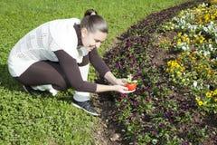 Meisje met elektronische zonne aangedreven bloem Royalty-vrije Stock Foto's
