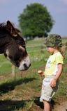 Meisje met ezel royalty-vrije stock foto