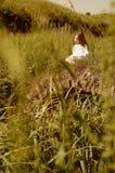 Meisje met fluit Royalty-vrije Stock Foto's