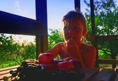 Meisje met fruit in de tuin Mooi weinig landbouwersmeisje die en organische vruchten, druiven, appelen houden eten E royalty-vrije stock afbeeldingen