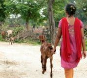Meisje met geit royalty-vrije stock afbeelding