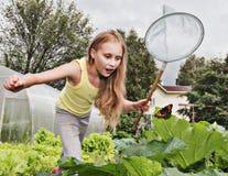 Meisje met het netto proberen om vlinders te vangen Stock Foto's