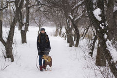 Meisje met hond in de winterbos Stock Foto's