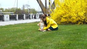 Meisje met hond op een gazon stock video