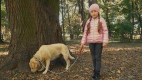 Meisje met Labrador stock videobeelden