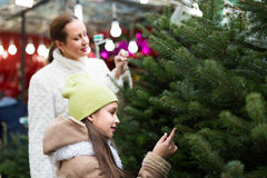 Meisje met mamma die de boom van het Nieuwjaar kiezen stock afbeelding