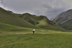 Meisje met paraplu in de bergen Stock Afbeelding