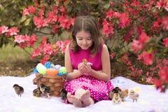 Meisje met Pasen-mand het spelen met kuikens Stock Afbeeldingen