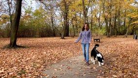 Meisje met puppy in park stock footage