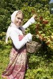 Meisje met rode aalbes royalty-vrije stock foto's