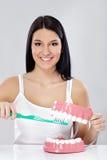 Meisje met tandenborstel en kaken Royalty-vrije Stock Fotografie