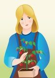 Meisje met tomaten Stock Afbeelding