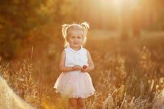 Meisje met twee staarten aardig weinig baby in een roze rok Het meisje loopt in het park bij zonsondergang royalty-vrije stock foto's