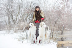 Meisje met twee windhonden in de winter, dalende sneeuw Stock Fotografie