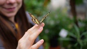Meisje met vlinder op de vingers Stock Afbeelding
