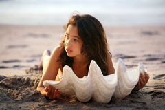 Meisje met zeeschelp Stock Foto