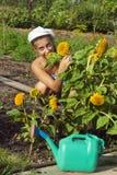 Meisje onder de zonnebloemen Royalty-vrije Stock Foto