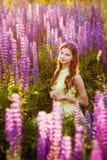 Meisje onder het tot bloei komen lupines Stock Afbeelding