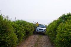 Meisje op auto stock afbeelding
