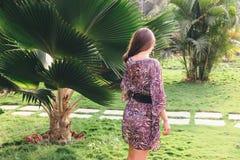 Meisje op de achtergrond van een palm Stock Foto's