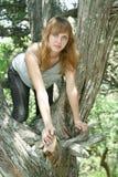 Meisje op de boom zoals een kat Stock Foto's