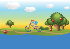 Meisje op de fiets Stock Afbeelding