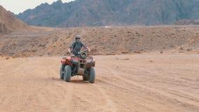 Meisje op de Ritten van een Vierlingfiets door de Woestijn van Egypte stock footage