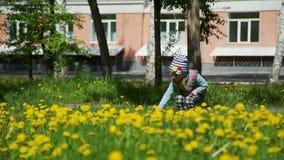 Meisje op een Gebied van Paardebloemen in de Lente stock videobeelden