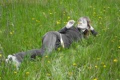 Meisje op een gras Royalty-vrije Stock Foto's