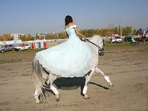 Meisje op een paard royalty-vrije stock fotografie