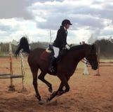Meisje op een paard Stock Fotografie