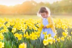 Meisje op gele narcisgebied Stock Afbeeldingen
