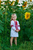 Meisje op het gebied met zonnebloemen Stock Afbeeldingen