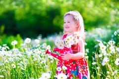 Meisje op het gebied van de madeliefjebloem Stock Fotografie