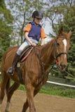 Meisje op het paard Royalty-vrije Stock Afbeeldingen