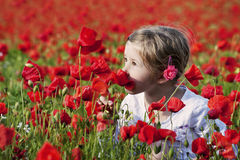 Meisje op het papavergebied Royalty-vrije Stock Fotografie