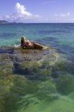 Meisje op koraalrif Stock Foto