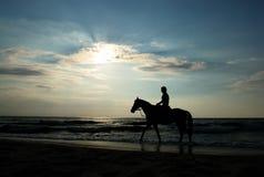 Meisje op paard Stock Fotografie