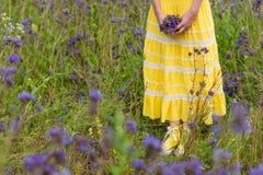 Meisje in purpere bloemen in openlucht in de zomer Royalty-vrije Stock Afbeelding