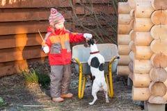 Meisje regales hond een traktatie in tuin stock afbeeldingen