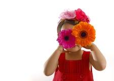 Meisje in rode kleding met gerberabloemen bij haar ogen Stock Afbeelding